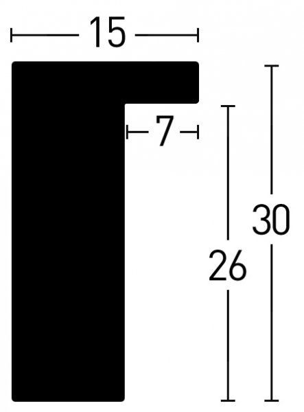Nielsen Holz Loft 15 Holzrahmen