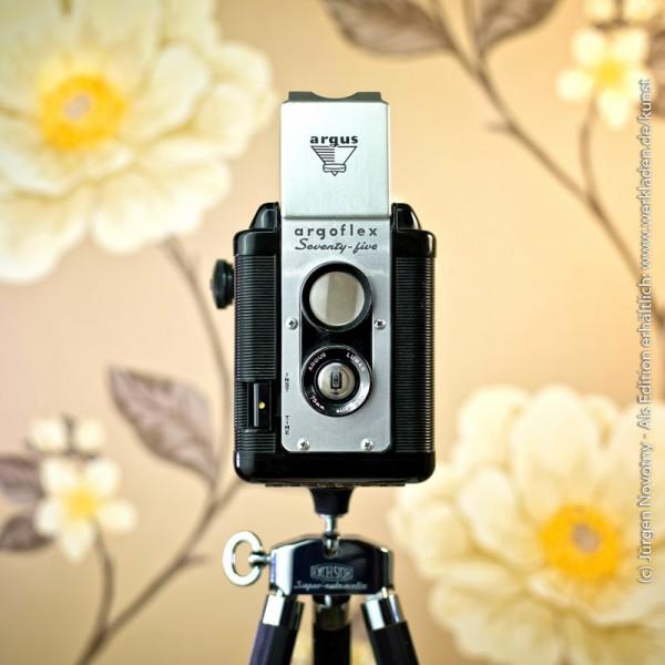 Cameraselfie Argoflex Argus Seventy-Five