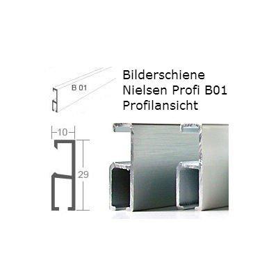 Nielsen Bilderschiene Profi B01 2 Meter